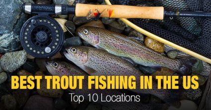 10 Locations for the Best Trout Fishing in the US