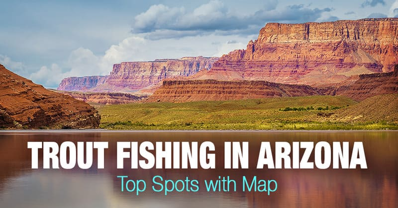 Trout Fishing in Arizona - Top Spots with Map