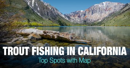 Trout Fishing in California – Top Spots with Map