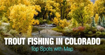 Trout Fishing in Colorado (CO) – Top Spots with Map