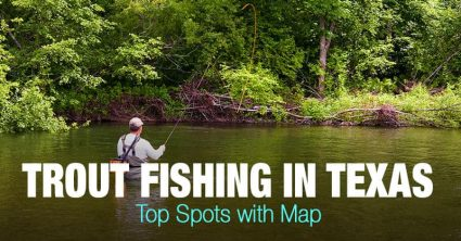 Trout Fishing in Texas (TX) – Top Spots with Map