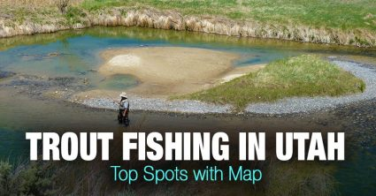 Trout Fishing in Utah – Top Spots with Map