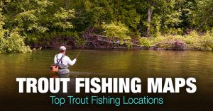 Trout Fishing Near Me – Top Trout Fishing Spots in the US