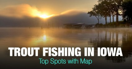 Trout Fishing in Iowa (IA) – Top Spots with Map