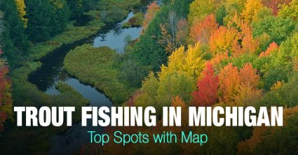 Trout Fishing in Michigan (MI) – Top Spots with Map