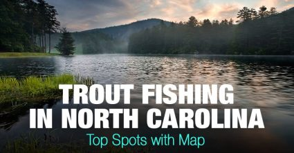 Trout Fishing in North Carolina (NC) – Top Spots with Map