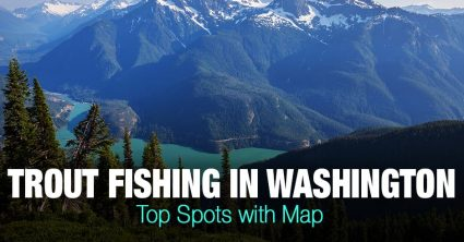 Trout Fishing in Washington (WA) – Top Spots with Map