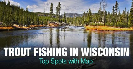 Trout Fishing in Wisconsin (WI) – Top Spots with Map