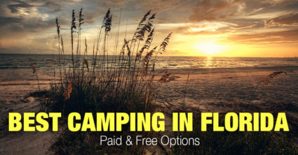Best Camping in Florida (Paid & Free Options)