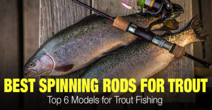Top 6 Best Spinning Rods for Trout Fishing