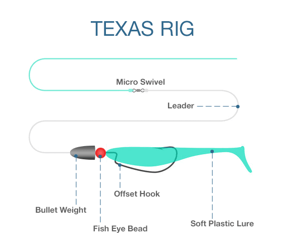 Texas Rig for Bass
