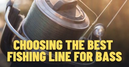 What is the Best Fishing Line for Bass?